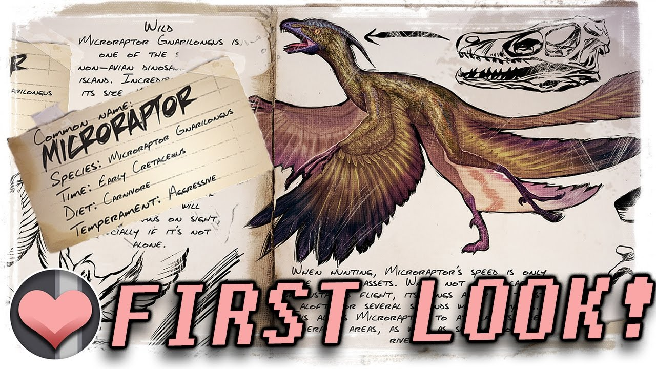 Awesome First Look: Microraptor   A Compy/Archaeopteryx/Dimorphodon Combo?   Patch  254   ARK: Dev Kit   YouTube