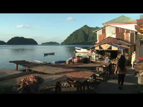BANDA SEA, SOUTH PAPUA & ENCOUNTER WITH ASMAT TRIBES - Ambai liveaboard