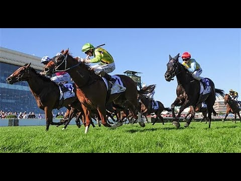 Learn Horse Racing Ratings Strategy From Veteran Analyst Trevor Lawson