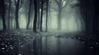 Forest of Shadows ~ Eternal Autumn