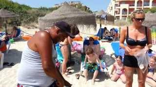 Mallorca Alcudia Beach
