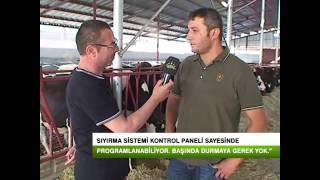 Ahır İçi Sistemler - Darılmazlar Çiftliği