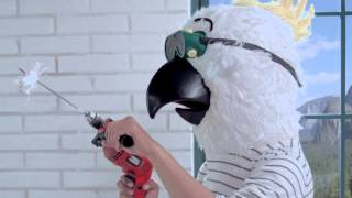 "Nestlé Indonesia Video: Iklan KITKAT #miniBREAKvideo 3 ""Kakatua : Mentok Pasti Berlalu"""