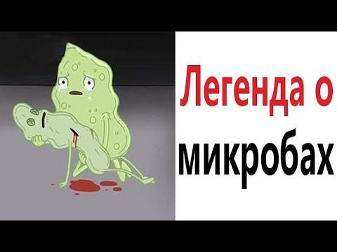 Приколы! ЛЕГЕНДА О МИКРОБАХ - МЕМЫ!!! Смешные видео от – Доми шоу!