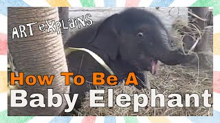 How To Be A Baby Elephant