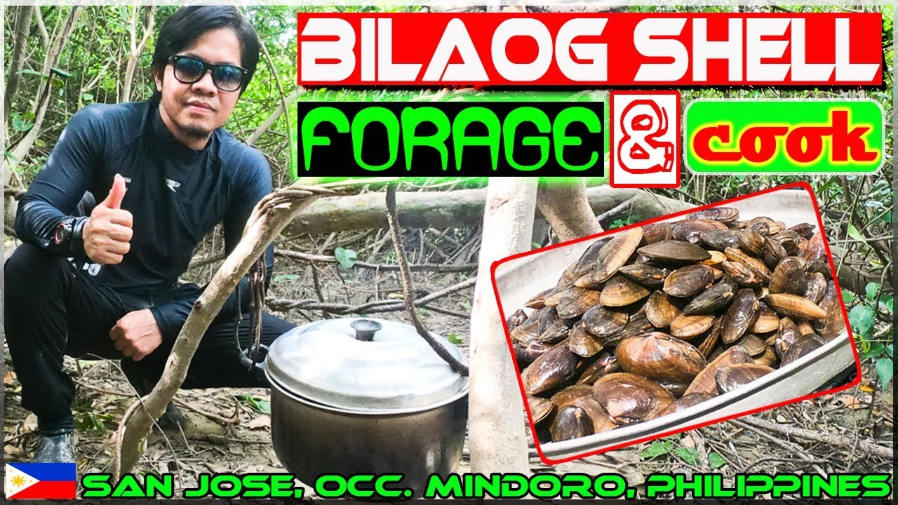 Harabas EP27 - Bilaog Shell Forage and Wild Cook
