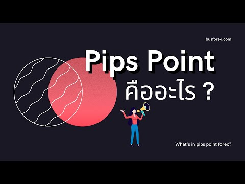 pips point คืออะไร   forex pips และ point คืออะไร หาได้จากไหน
