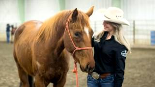 Reata Brannaman - MSU Equine Instructor News in Agriculture