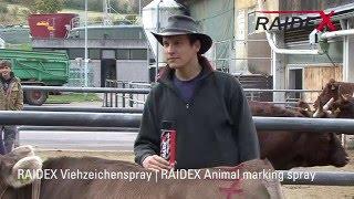 Aérosol RAIDEX Spray marqueur