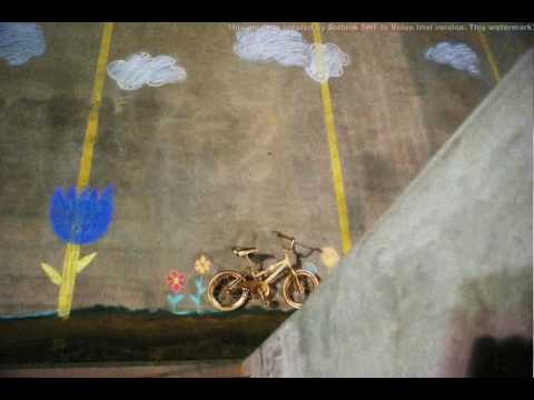 Psapp - Tricycle - Stop Motion Animation Project