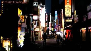 Japan Trip 2013 Tokyo Shinjuku Kabukicho Night view 75