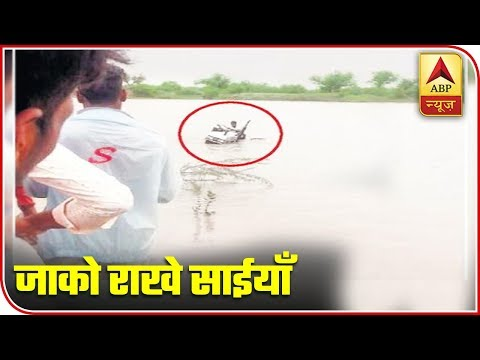Watch Top Viral News Of The Day | ABP News
