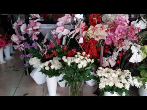 Antalya Çiçek Gönder 02423453210 Orkide sipariş saksıda çiçek sipariş hemen çiçek gönder