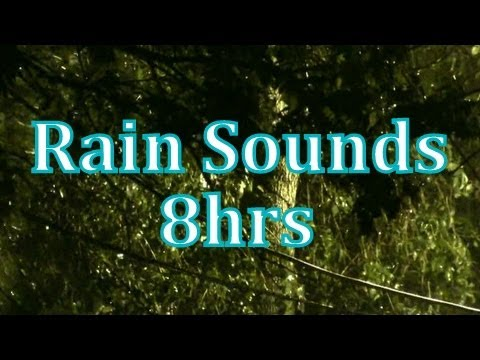 """Rain"" 8 hours of ""Rain Sounds""    ""Sleep Sounds"" ASMR"