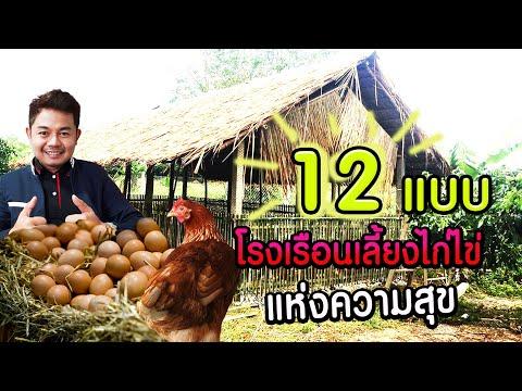 12 แบบ เล้าไก่ไข่ แห่งความสุข - โต๋ Pakdong Channel
