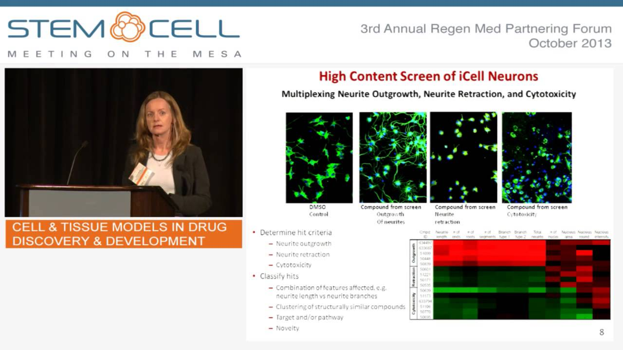 Cell & Tissue Models in Drug Discovery & Development - Case Presentation