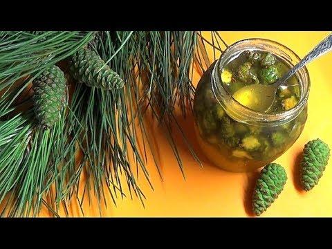 Для детей и взрослых мед из сосновых шишек от кашля,ангины, простуды. Заготовьте сейчас