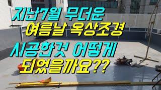 옥상조경/수사해당/산수국/목수국/썬빔/비비추/미스김라일…