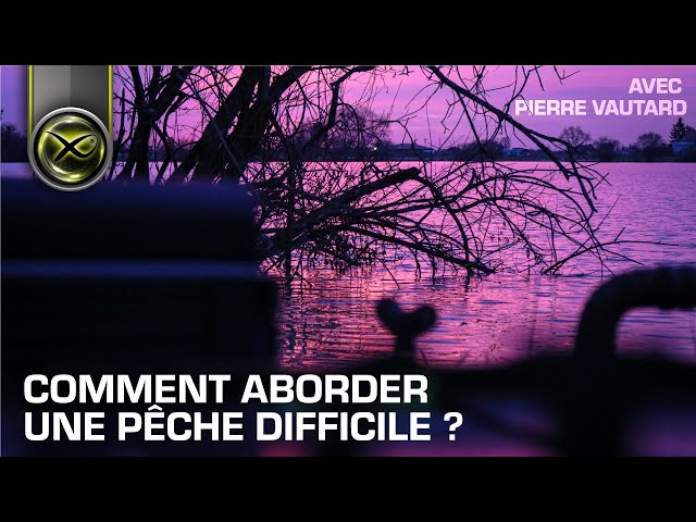 Comment aborder une pêche difficile ? avec Pierre Vautard - Matrix Fishing TV France