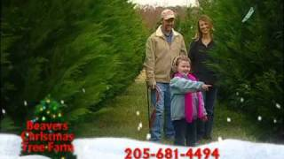 Beavers Christmas Tree Farm Alabama