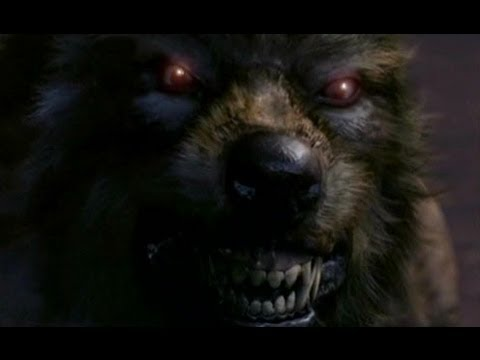 Werewolf Compilation Mashup [Music Video]