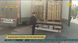 Қырғызстаннан келетін жеміс-жидектен қауіпті зиянкестер жиі табылады