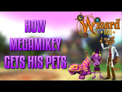 WIZARD 101 - Opossum Baby to Adult & Hybrids! by Valkoor Ice