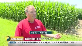 [国际财经报道]美国:玉米地迷宫 帮助农民解压| CCTV财经