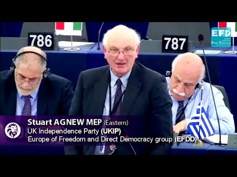 Another report aimed at one political objective: a United States of Europe - Stuart Agnew MEP