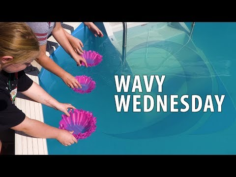 3D Printing For Wavy Wednesday!