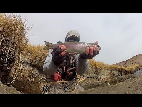 Owens River Tri-fecta 😂 ,virus Free,,