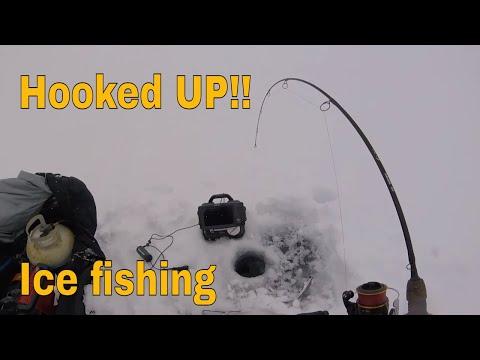 Ice Fishing Lake Trout And Whitefish On Lake Simcoe