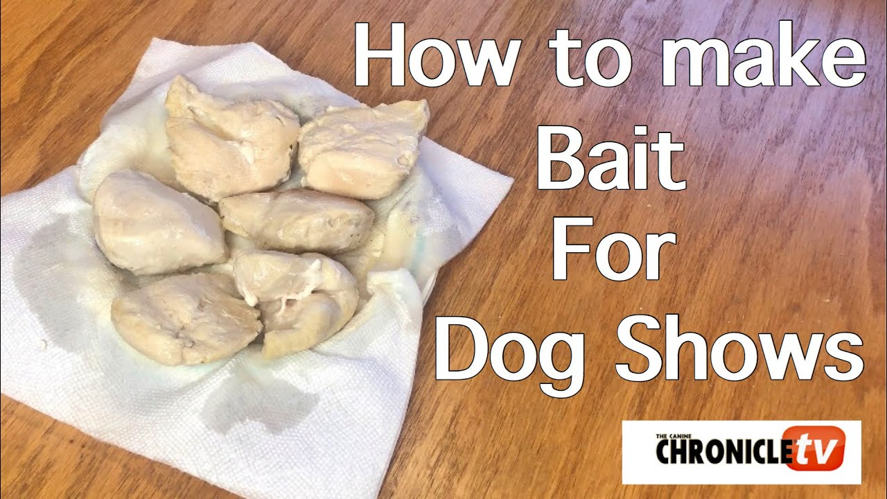 Prepare Bait for Dog Showing