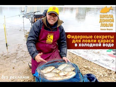 Фидерные секреты для ловли карася в холодной воде