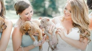 Bridal Party Poses with Rescue Puppies Instead of Bouquets | Iris