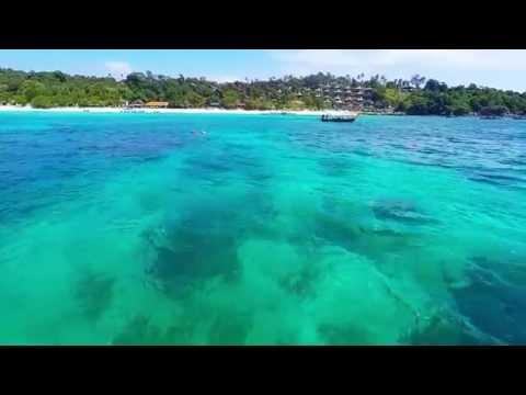 Speedboat trip to Phi Phi island from Krabi