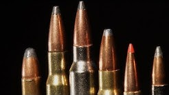 Hunting Calibers: Which One is the Best?