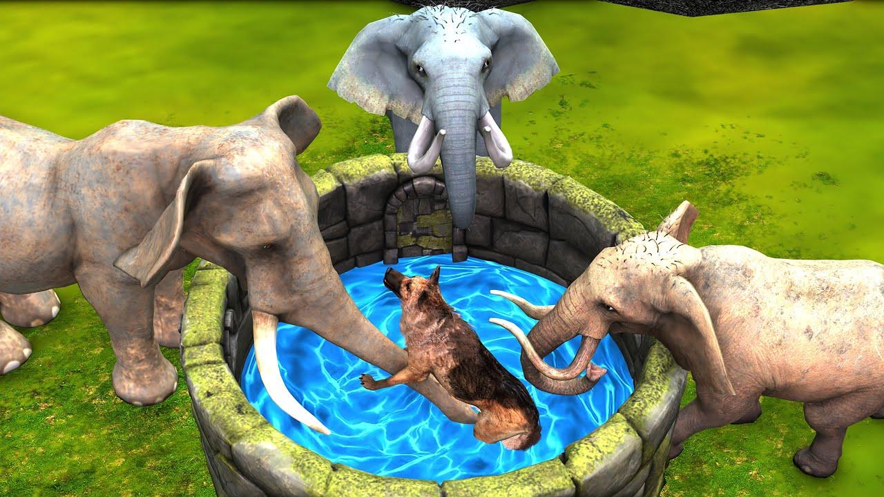 मूर्ख कुत्ता बचाव हाथी Dog Rescued from Well Elephant Hindi Kahaniya हिंदी कहनिया Hindi Stories