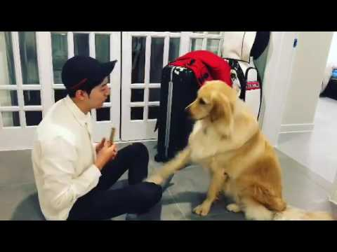 Jungshin With His Dog, SIMBA 😍