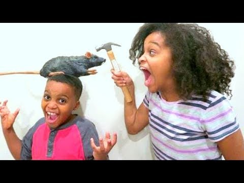 Thumbnail: Bad Baby GROSS Rat Chase! - Disgusting Rotten Rat Prank - Shasha And Shiloh - Onyx Kids