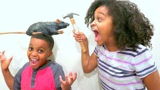 Bad Baby GROSS Rat Chase! - Disgusting Rotten Rat Prank - Shasha And Shiloh - Onyx Kids