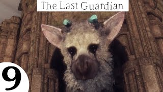The Last Guardian Walkthrough - Part 9 (PS4)