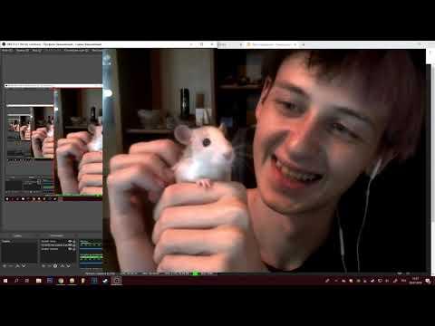 Одис Показывает Свою Новую Крысу