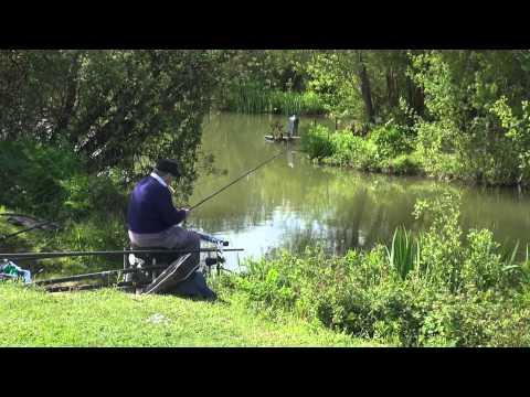 ROYAL BERKSHIRE FISHERY, WINDSOR, BERKSHIRE, ANGLERS MAIL TACTICAL BRIEFINGS