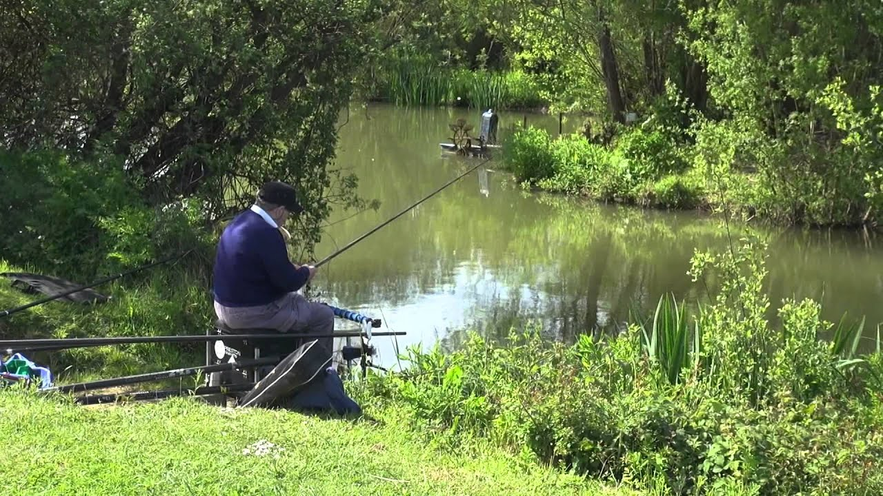 ROYAL BERKSHIRE FISHERY WINDSOR ANGLERS MAIL TACTICAL BRIEFINGS
