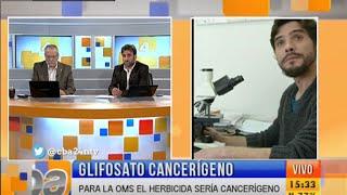 La UNRC detectó daño genético en niños expuestos a glifosato