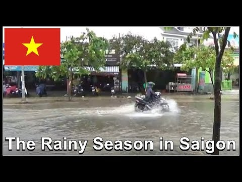 The Rainy Season in Saigon / Vietnam 2017