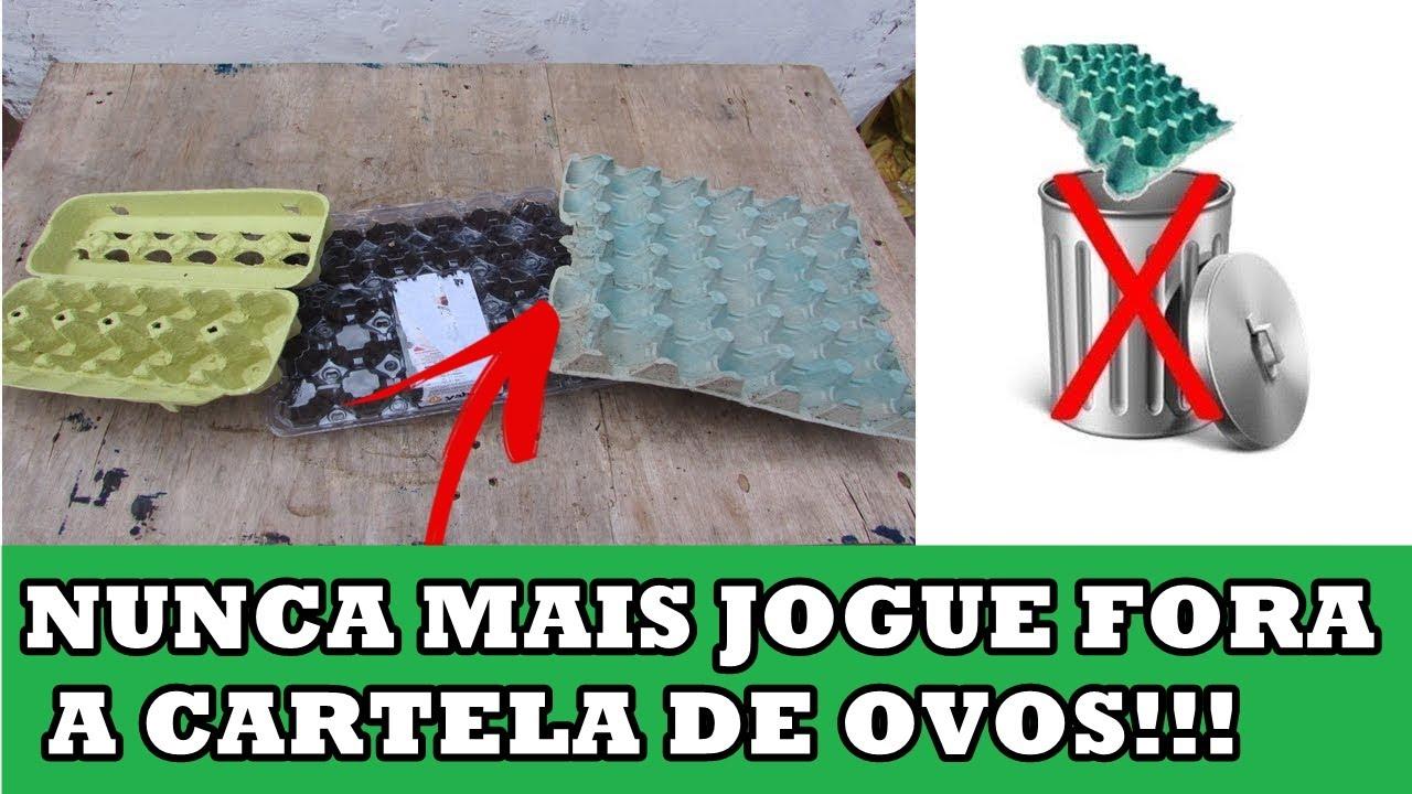COMO FAZER UMA SEMENTEIRA COM CAIXA DE OVOS -(HORTA DO DIA)