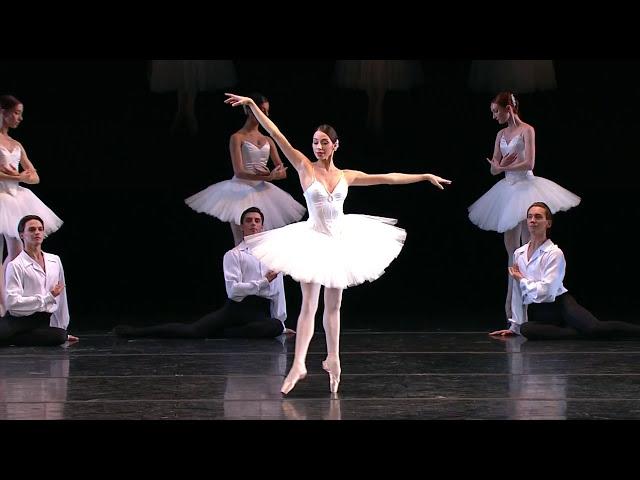 Kocert kuski balet 20let kultura
