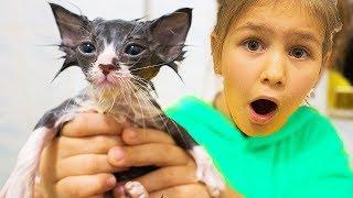 24 часа с моим ПИТОМЦЕМ котёнок Мурчик ЯНА кормит и ухаживает Купаем ПОКУПКИ для питомца